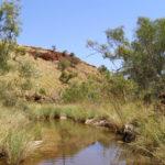 Hamersley Range, Pilbara Region von Barry T. Coles