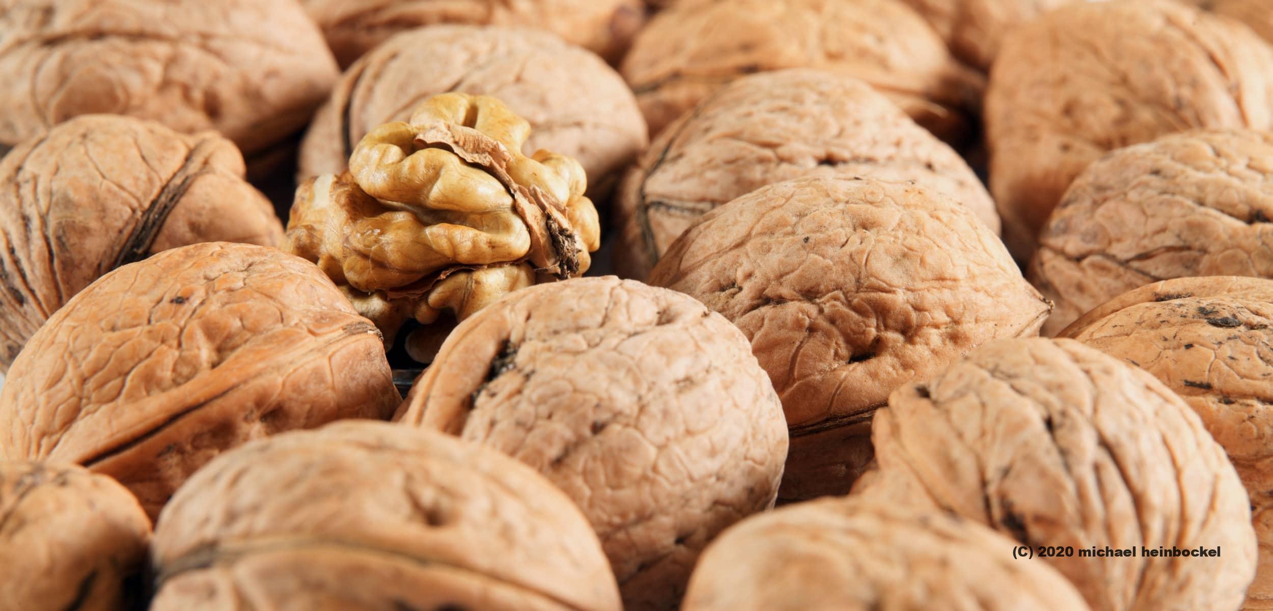 Peeled Walnut - © Michael Heinbockel