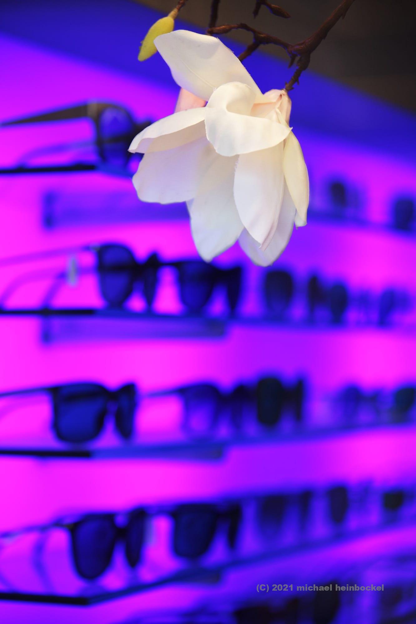 Sunglasses, Fotografie